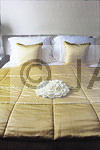 White on Gold Bedspread